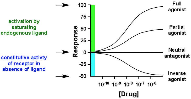 Basics of Receptor Drug Interactions 800px-Inverse_agonist_2