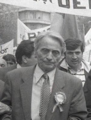 Ion Diaconescu - Ion Diaconescu in 1990.