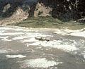 Isla Mocha 1960 tsunami.jpg