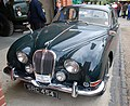 Jaguar (2449456694).jpg