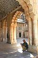 Jaipur, India (337170969).jpg