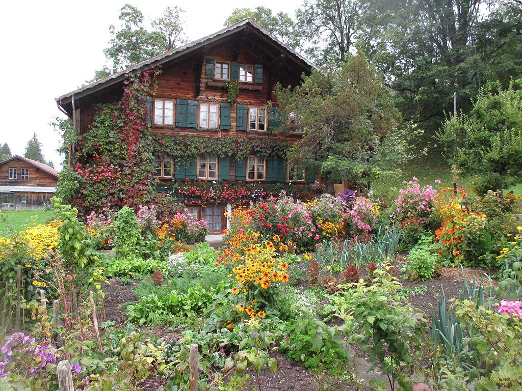 File jardin potager wikimedia commons for Entretien d un jardin potager