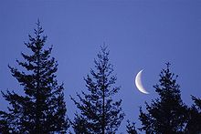 Jeff Fennell - Early Morning Moon (by).jpg