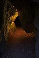 Jeskyně v masivu Kolíbky, národní přírodní rezervace Rudické propadání, okres Blansko (05).jpg