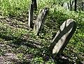 Jewish cemetery Zelechow IMGP3218.jpg