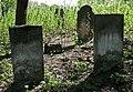 Jewish cemetery Zelechow IMGP3224.jpg