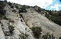 Joe Lott Tuff (Lower Miocene, 19 Ma; Joe Lott Creek Canyon, Tushar Mountains, Utah, USA) 1.jpg