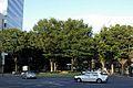 Jozenji-dori Avenue 2005.jpg
