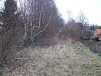 Kändler Bahndamm (1).JPG
