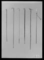 Käpp med knopp av snidad elfenben - Livrustkammaren - 52196.tif