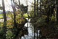 Köln - Knochenbergsweg - Mutzbach 02 ies.jpg