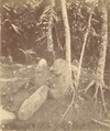 KITLV 87638 - Isidore van Kinsbergen - Sculptures at Artja Domas at Buitenzorg - Before 1900.tif