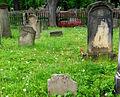 Kamienna Góra, cmentarz żydowski (Aw58)DSCF7724.jpg