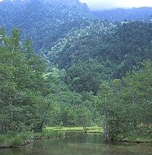Kamikochi Marsh.jpg