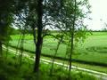 Keltische omwalling - Camp d'Attila - bij La Cheppe, Frankrijk 2004.jpg