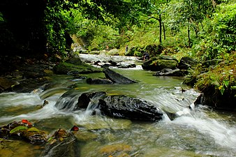 Khaiachara Waterfalls, Mirshari, Bangladesh.JPG