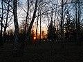 Khimselyshche, Cherkasy, Cherkas'ka oblast, Ukraine - panoramio (55).jpg
