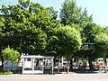 Kikusui Park.JPG