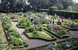 Ballymaloe Cookery School - The modern, formal herb garden at Ballymaloe Cookery School