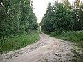 Kirovsky District, Leningrad Oblast, Russia - panoramio - Владимир Парамонов (7).jpg