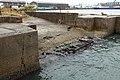 Kokura Port (Hankyu Ferry)-04.jpg