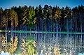 Kostroma, Kostroma Oblast, Russia - panoramio (12).jpg