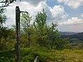 Kostrzyna - panoramio.jpg
