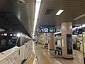 Kotakemukaihara Ststion platforms Ginza line Nov 15 2020 various.jpeg