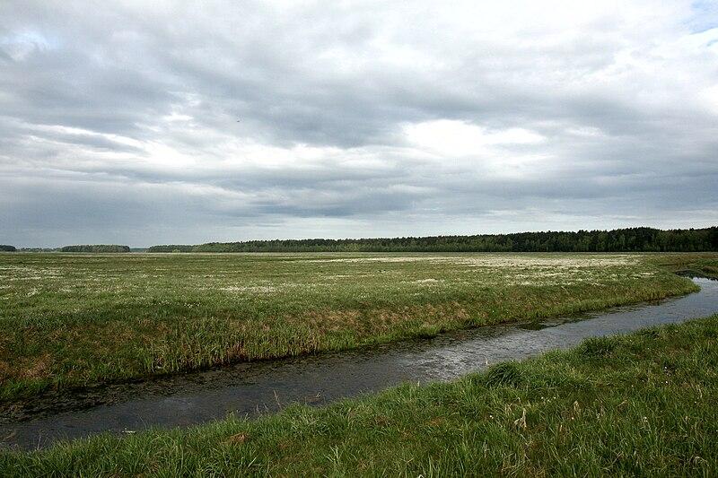 File:Krajavid, Miadzielski rajon.jpg