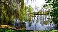 Kruszyn staw w parku w okolicy szkoły - panoramio.jpg