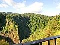 Kuranda QLD 4881, Australia - panoramio (24).jpg