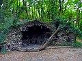 LYON CALUIRE BOIS DE LA CAILLE - panoramio (1).jpg