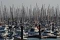 LaRochelle port de plaisance 650 2019 07 22.jpg