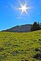 La Dôle - panoramio (12).jpg