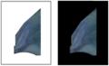 La Femme au miroir, détail de l'écharpe bleue.png