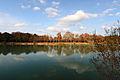Lac Vert Automne.JPG