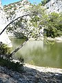 Lac de Peiroo à Saint-Rémy-de-Provence.jpg