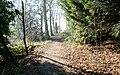Lady Spencer's Walk - geograph.org.uk - 803574.jpg