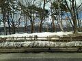 Lake Yamanakako from bus for Kawaguchiko Station 5.JPG