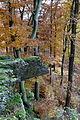 Landschaftsschutzgebiet Hoppecke-Diemel-Bergland-Typ A - Herbstwald (12).jpg
