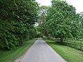 Lane heading south through Wispington (geograph 3489999).jpg
