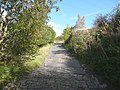 Lane off Godley Branch Road, Halifax - geograph.org.uk - 998901.jpg