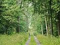 Lauchäcker - panoramio (3).jpg
