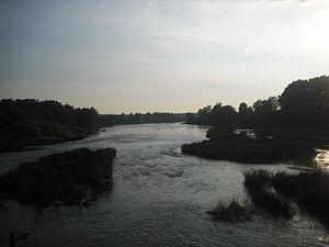 Luga River - The Luga close to the town of Kingisepp