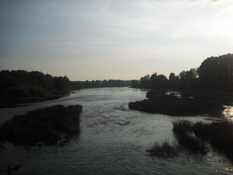 Luga River - The Luga close to the town of Kingisepp