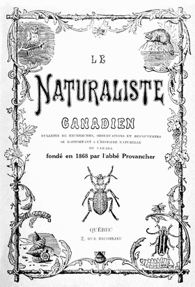 Image illustrative de l'article Le Naturaliste canadien