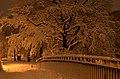 Lebenswertes chemnitz winter schlossteichinsel nacht schnee bruecke romantisch.jpg