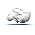 Left Talus bone 12 medial view.png