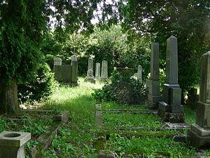 Lendava Synagogue - Cemetery