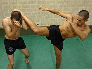 Roundhouse kick a kick in which the practitioner lifts their knee while turning the supporting foot and body in a semicircular motion